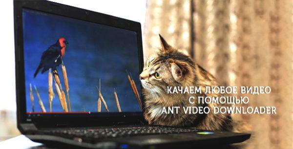 videonakompyuter