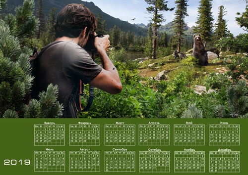 природа,медведи,фотограф,календарь